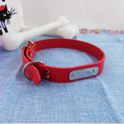 Collar de Perro con Chapa para Nombre, 63 cm
