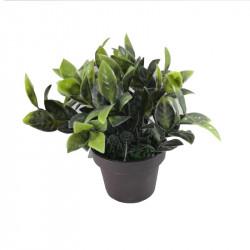 Planta artificial pequeña cheflera para escritorio y baño. Decoración de verano