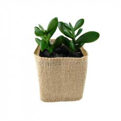Planta artificial tiesto de rafia para escritorio y baño. Decoración de verano