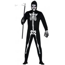 Esqueleto Adulto